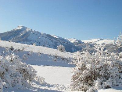 Les Sabots de Venus Ski Joëring