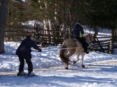 Poneyclub de la Gardiole Ski Joëring
