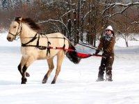 ski joering col de Charamel