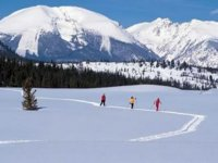 Ski nordique dans les Hautes Alpes