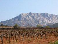 visite des vignobles de provence avec un expert
