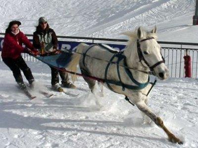 Crinières aux Vents Ski Joëring