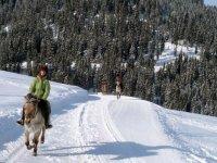 randonnee equestre en hiver dans les Aravis