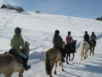 sortie a cheval l hiver a La Clusaz
