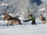 Balade a sensations en ski joering
