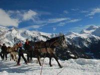 Randonnee facile en ski joering