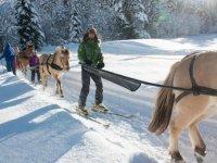 Sortie ski joering entre amis