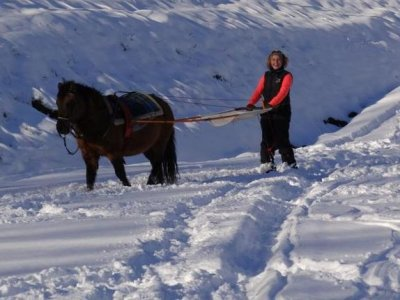 Ecuries de la Luye Gap Ski Joëring