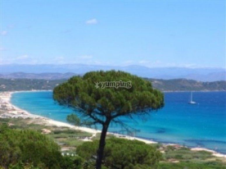 Les paysages magnifiques de la Cote d Azur