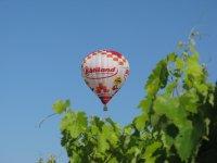 Entre ciel et vignes en ballon