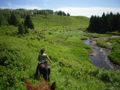 Equibauges Randonnées Equestres