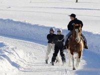 balade et decouverte ski joering dans les Bauges