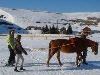 Seance decouverte ski joering Diois Vercors