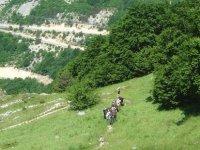 sortie equestre au Col du Rousset