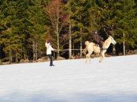 balade ski joering et initiation