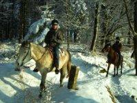 balade a cheval dans la neige