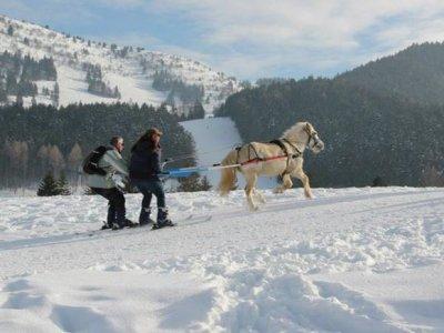 Espace Equestre du Trièves Ski Joëring