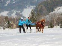 Nouvelles sensations de glisse avec le cheval