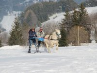 Ski joering en tandem