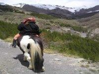 Randonnee equestre Verdon