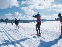 Cours particulier de ski nordique