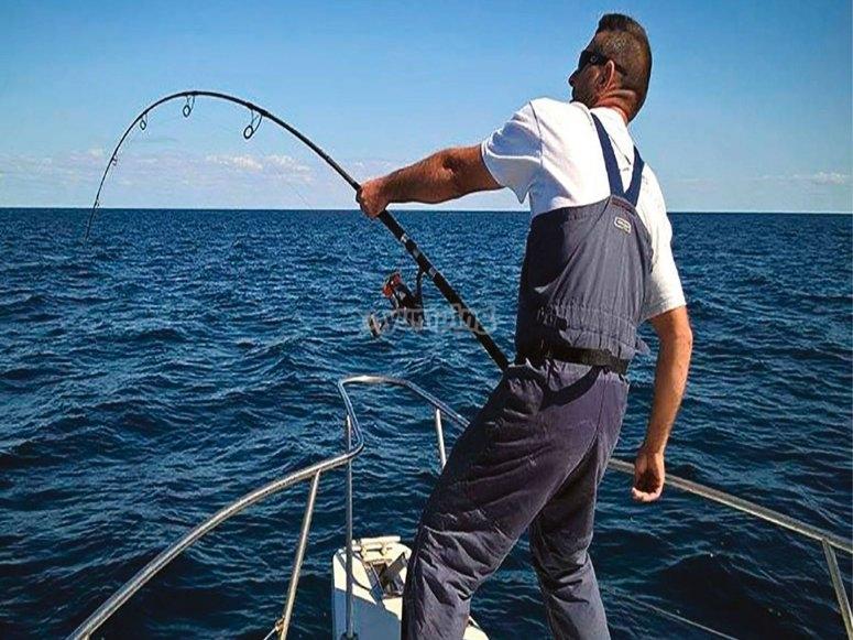 Pêche à la seiche