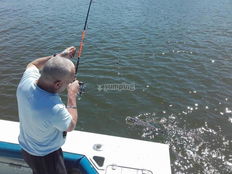 Pêche aux bars