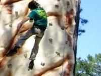 initiation a la grimpe sur structure artificielle au parc