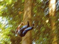 Vive la tyrolienne avec Woody Park