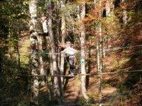 Parcours aventure enfant en Rhone Alpes