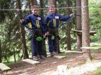 Securite et jeux dans les arbres