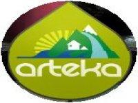 Arteka Orientation
