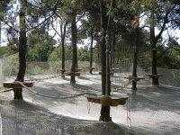 Parcours unique dans les arbres