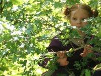 Randonnees pedagogique pour decouvrir la nature des Ardennes