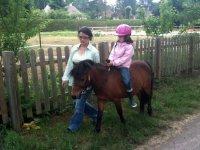 Sorties avec des poneys pres de Fontainebleau