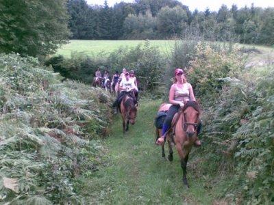 Loisirs en Morvan Randonnées Équestres