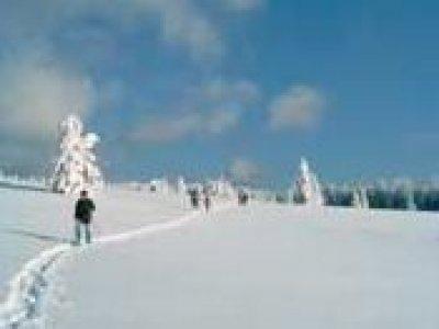 Vosges dans l'vent Ski