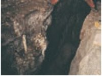 Speleologie horizontale avec Nature Cevennes Speleologie