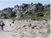 Randonnee a velo sur le Mont Aigoual