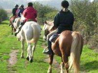 Sortie equestre Morbihan