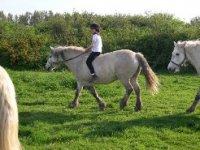 Tourisme Equestre Highlands