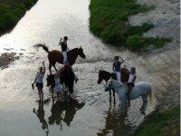 Aventure Equestre dans la nature