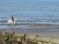 Sortie cheval a la plage
