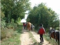 sur les sentiers a cheval