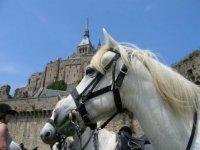 Sortie Equestre Mont St Michel