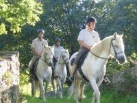 Sortie a cheval en Mayenne sur les sentiers