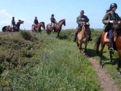 Ferme Equestre de Neuville