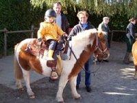 Activites enfants a cheval