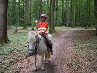 Randonnee equestre en pleine nature