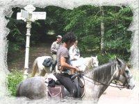 Randonnee equestre en juin
